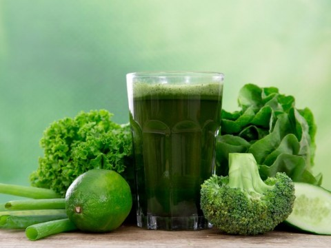 Programi prehrane onkoloških bolesnika, Adhara nutricionizam