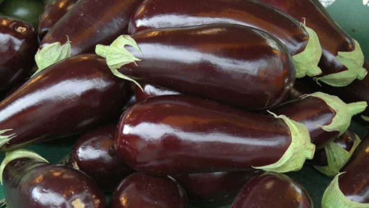 Patlidan-u-ulju-ayurveda-nutricionizam