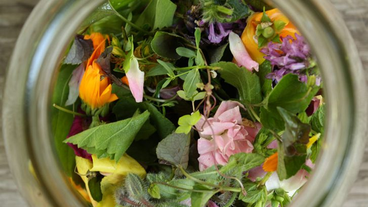 biljni-pripravci-adhara-nutricionizam-ayurveda
