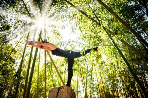 yoga za web